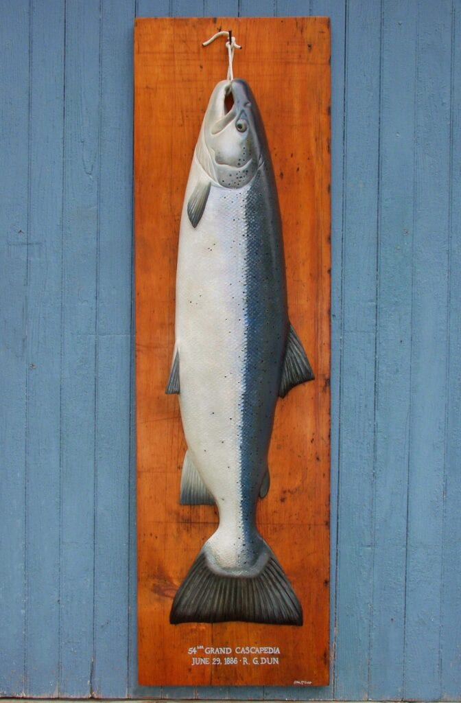 Cascapedia river record carving atlantic salmon